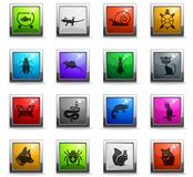 Pets icon set. Pets web icons in square colored buttons for user interface design vector illustration