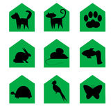 Pets icons. Green web buttons of pet animals Stock Photography