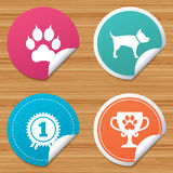 Pets icons. Cat paw with clutches sign. Stock Image