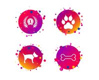 Pets icons. Cat paw with clutches sign. Vector. Pets icons. Cat paw with clutches sign. Winner laurel wreath and medal symbol. Pets food. Gradient circle buttons royalty free illustration