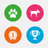 Pets icons. Cat paw with clutches sign. Stock Photo