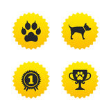 Pets icons. Cat paw with clutches sign. Stock Images