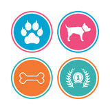 Pets icons. Cat paw with clutches sign. Royalty Free Stock Images