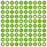 100 pets icons hexagon green Royalty Free Stock Image