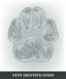 Pets identification Stock Image