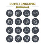 Pets and Insects linear icons set. Thin outline royalty free illustration