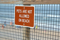 Pets are not allowed on beach Stock Image