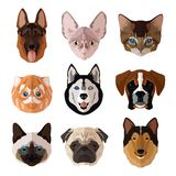 Pets portrait flat icon set Royalty Free Stock Photo
