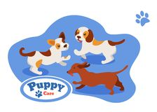 Pets, puppies different breeds, play, frisking run after each other. Caring for puppy, pet. Pets, puppies of different breeds, play, frisking run after each royalty free illustration