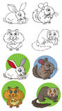 Pets rodents Royalty Free Stock Images