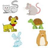 Pets Royalty Free Stock Photos