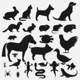 Pets silhouettes icons set. Vector illustration - eps 10 royalty free illustration