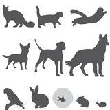 Pets silhouettes set icons  Stock Images