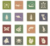 Pets icon set. Pets web icons - paper stickers for user interface design stock illustration