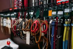 Petshop, leashes for dogs and cats closeup, nobody. Zooshop variety, no people, pet shop, tethers Stock Photos