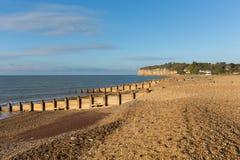 Pett nahe Fairlight-Holz, Hastings East Sussex England Großbritannien lizenzfreies stockfoto