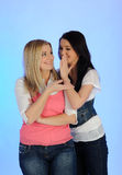 Pettegolare grazioso delle due giovane ragazze Fotografia Stock Libera da Diritti
