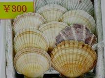 Pettine da vendere ad un mercato dei frutti di mare Fotografia Stock