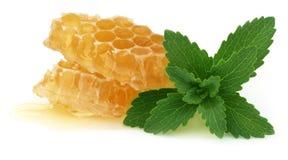 Pettine del miele con la stevia Fotografie Stock Libere da Diritti
