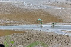 Pettine della spiaggia - paesaggio di Xiapu Immagine Stock Libera da Diritti