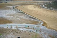 Pettine della spiaggia - paesaggio di Xiapu Fotografia Stock Libera da Diritti