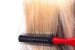 Pettine e capelli Fotografia Stock