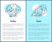 Pettine ed ostrica Marine Creatures Poster illustrazione vettoriale