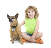 Petting the dog royalty free stock photo