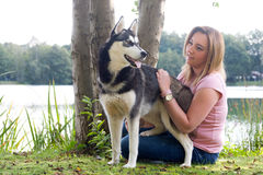 Petting the dog Stock Photography