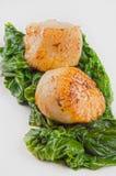 Pettini con spinaci su una zolla Fotografie Stock