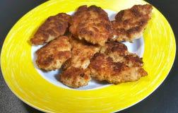 Petto di pollo immagine stock