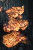 Petto di pollo marinato arrostito 2 Fotografia Stock Libera da Diritti