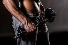 Petto maschio del muscolo Fotografia Stock