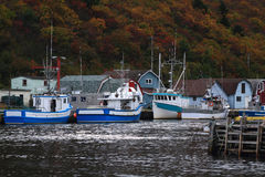 Petty Harbor Newfoundland Royalty Free Stock Images