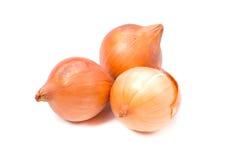 Petty onion Stock Photos