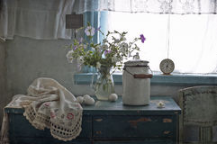 petunia biel obrazy royalty free