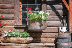 Petunia flowers pots on the window of a wooden rustic log cabin in the Alps, Aosta Valley Italy Royalty Free Stock Photos