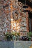 Petunia i obrieta w kwiatów garnkach, zboża z liśćmi w szklanych słojach stoi blisko kwiatu sklepu zdjęcia royalty free
