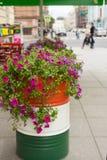 Petunia púrpura en un barril del metal en la calle Imagenes de archivo