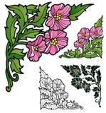 Petuniahoeken Royalty-vrije Stock Afbeeldingen