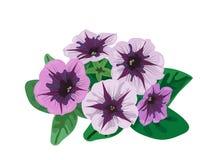 Petunian blommar busken Arkivbilder