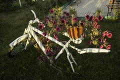 Petunias brillantes en una bicicleta Fotos de archivo libres de regalías