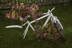 Petunias brillantes en una bicicleta Imagenes de archivo