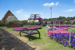 Petunias in the Miracle Garden Stock Image