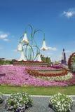 Petunias in the Miracle Garden. Dubai Royalty Free Stock Photos