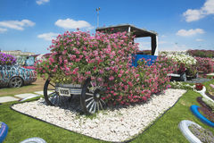 Petunias and retro car in the Miracle Garden Stock Photo