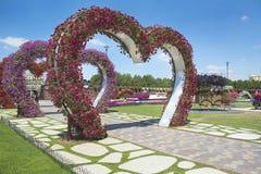 Petunien im Wunder-Garten Lizenzfreies Stockbild