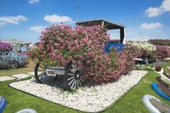 Petunien und Retro- Auto im Wunder arbeiten im Garten Stockfoto