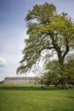 Petworth ziemie w Sussex i dom Zdjęcia Royalty Free