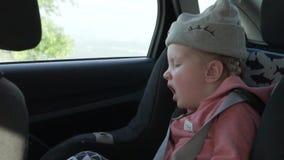 Peu équitation de fille dans la voiture banque de vidéos